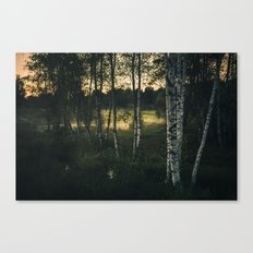 The silence in between Canvas Print