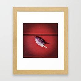 Leaf no. 3 Framed Art Print