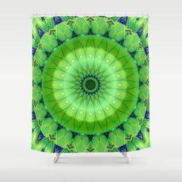 Mandala foretaste of spring Shower Curtain