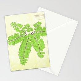 Maidenhair Fern Detail 3 Stationery Cards
