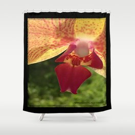 Yellow Orchid Flower Blossom from Mexico Shower Curtain