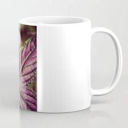 Dusk Fen Shui Coffee Mug