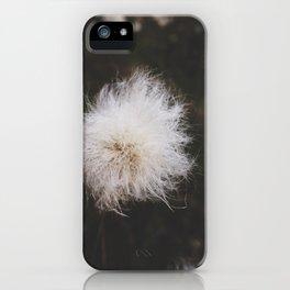 magic land iPhone Case