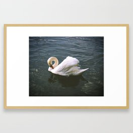 Sw(ans)itzerland Framed Art Print