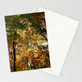 Through the Trees in October Stationery Cards