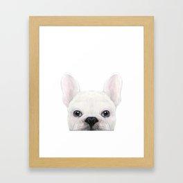 French bulldog white Dog illustration original painting print Framed Art Print