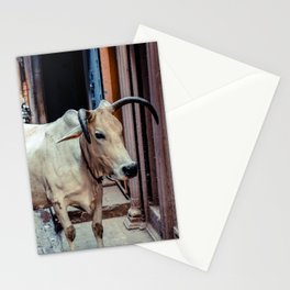 Holy Cow... Stationery Cards