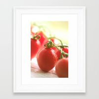 italian Framed Art Prints featuring Italian tomatoes  by Tanja Riedel