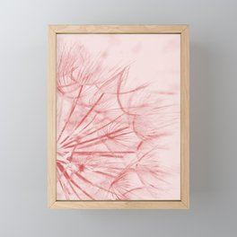 Dandelion In Pink Framed Mini Art Print