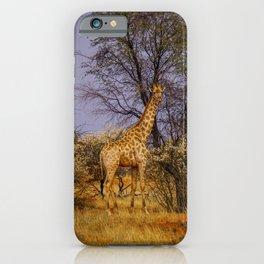 Giraffe in Namibia│Kalahari Desert, Namibia (Africa) | Colorful Travel Photography iPhone Case
