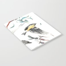 Birdwatching Notebook