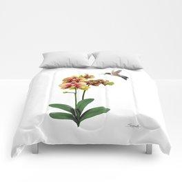 Hummingbird & Phalaenopsis Comforters