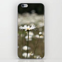 Wildflowers in an Oregon Field iPhone Skin