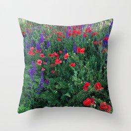 Good buy my Summer Throw Pillow