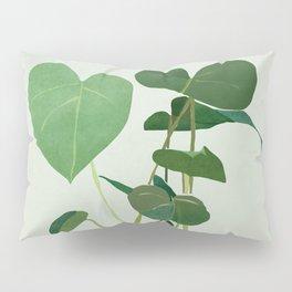 Plant 3 Pillow Sham