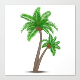 Tropical palm tree with coconuts symbol isolated vector illustration Canvas Print