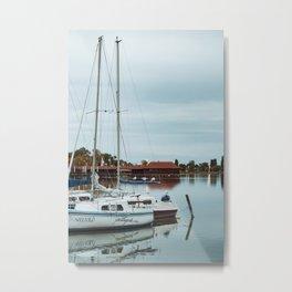 Seagulls on boat at Lake Palic, Serbia / Blue / Dawn Metal Print