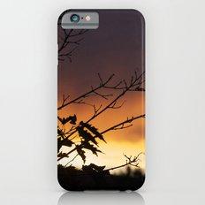 Sundown iPhone 6s Slim Case