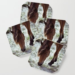 grazing Coaster