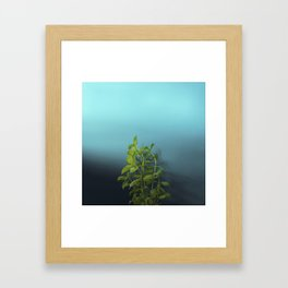 Shy and charming basil Framed Art Print