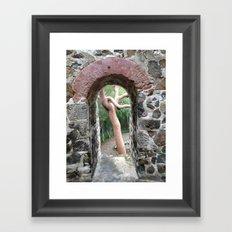 Virgin Islands, Sugar Mill Stone Ruins, Turpentine Tree Framed Art Print