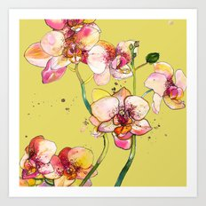 Pink Orchids in Yellow Art Print
