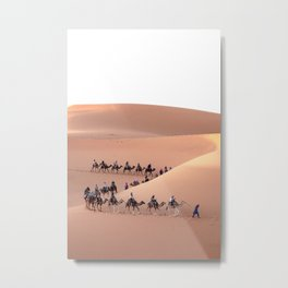 Camels in the Sahara - travel photography & landscapes Metal Print