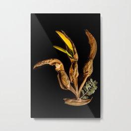 Natural Craw Metal Print