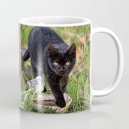 Lovely black cat walking her garden Coffee Mug