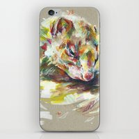 ferret iPhone & iPod Skins featuring Ferret IV by Anaïs Chesnoy