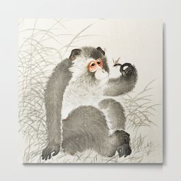 The monkey an the Fly Metal Print