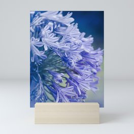 Born into Colour Mini Art Print
