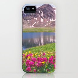 Indian paintbrush/Alpine Lake below Independence Pass, Colorado iPhone Case