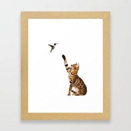 A kitten and bird Framed Art Print