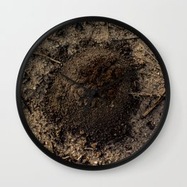 Emerging Ant Wall Clock