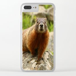 On The Rocks Marmot Clear iPhone Case