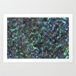 Abalone Shell | Paua Shell | Sea Shells | Patterns in Nature | Natural | Art Print