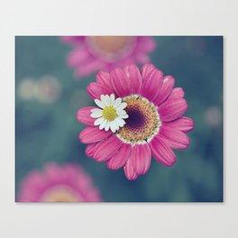 The Daisy Sitter Canvas Print