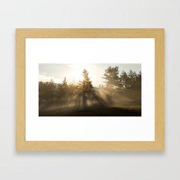 Sunrise bursting through trees and mist at Palsko Framed Art Print