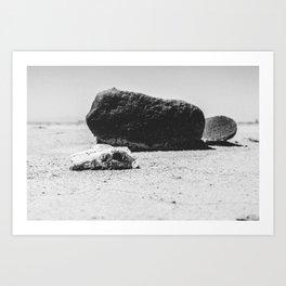 Desert Death Art Print