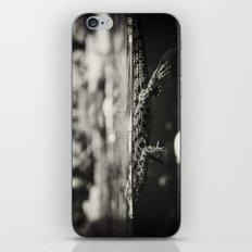 Baby Crocodile iPhone Skin