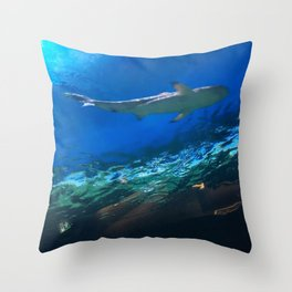 Shark Underwater Throw Pillow
