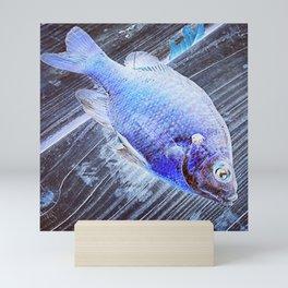 Blue Fish Mini Art Print