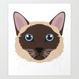 Traditional Classic Siamese Cat  Art Print
