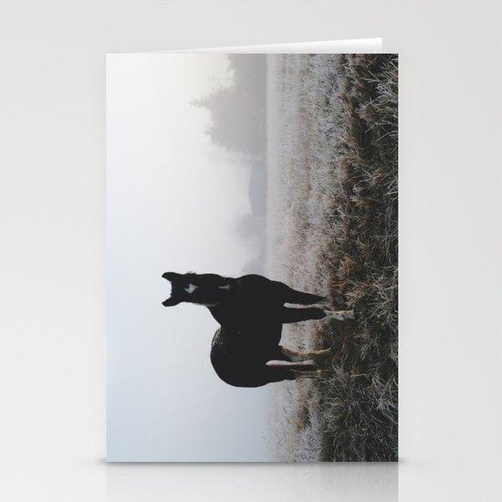 Frosty Klamath Horse Stationery Cards