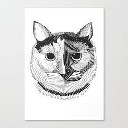 Phoenix the Queen Cat Canvas Print
