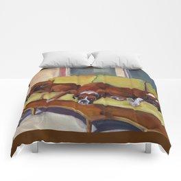 Boxer Dog Siesta Comforters