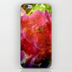 Orchids2 iPhone & iPod Skin