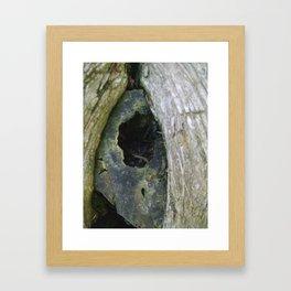 Buckshot Framed Art Print
