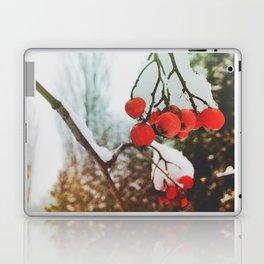in winter Laptop & iPad Skin